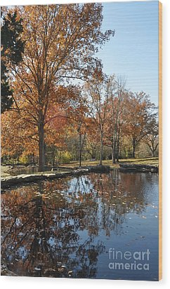 Reflection In The Water Wood Print by Denise Ellis