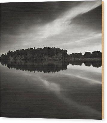 Reflection Wood Print by Jaromir Hron
