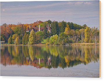 Reflection Wood Print by Luba Citrin