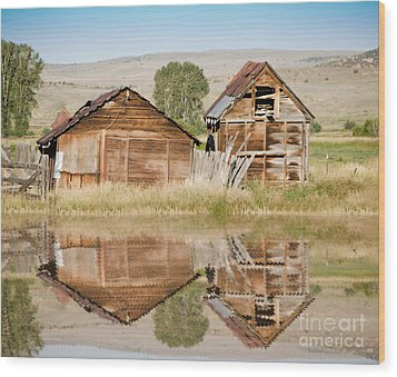 Reflection Of An Old Building Wood Print by Donna Greene