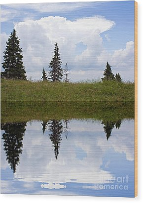 Reflection Of Lake Wood Print by Odon Czintos