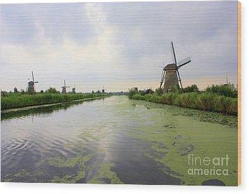 Reflection Of Sky At Kinderdijk Wood Print by Carol Groenen