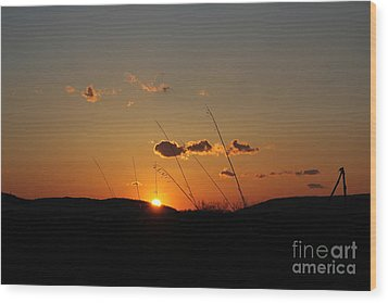 Wood Print featuring the photograph Reflections At Dusk by Everett Houser