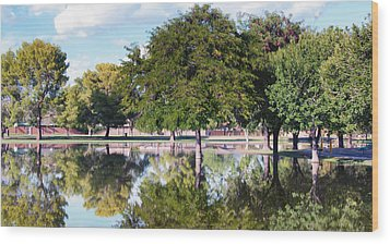 Reflections Wood Print by Diane Wood