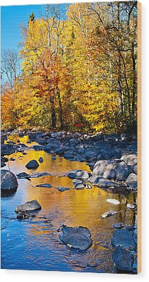Reflections Down The Creek Wood Print by Adam Pender