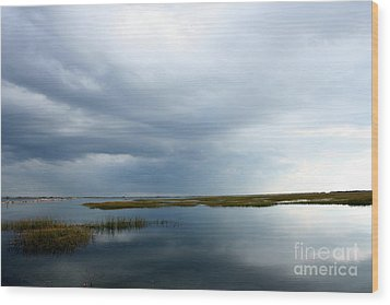 Reflections Wood Print by Gail Behrik