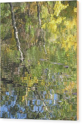 Reflections In Paradise 1 Wood Print by Anita Burgermeister