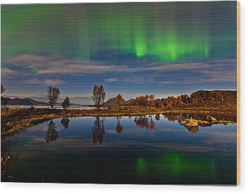 Reflections In The Pond Wood Print by Frank Olsen