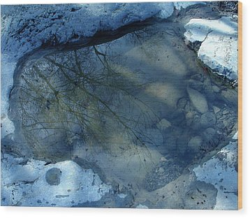 Reflections In Water Wood Print by Colette V Hera  Guggenheim