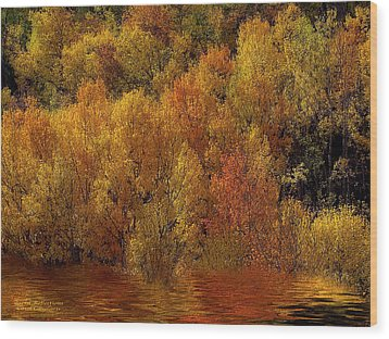 Reflections Of Autumn Wood Print by Carol Cavalaris