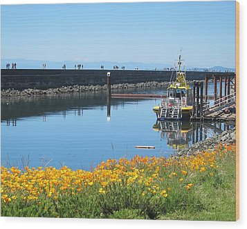 Reflections Of Ogden Point Wood Print