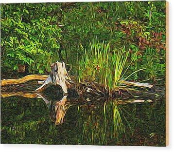 Reflections Wood Print by Sotiri Catemis