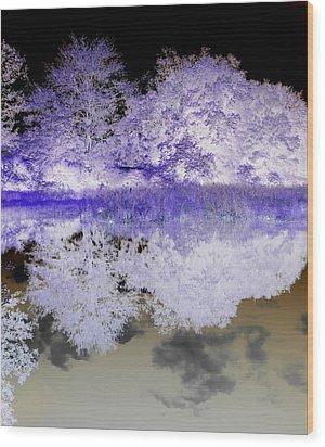 Reflective Abstracts Wood Print by Kim Galluzzo Wozniak