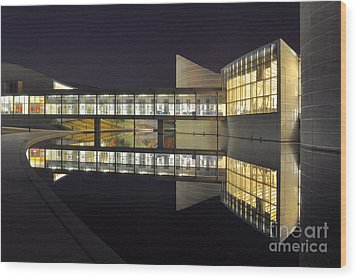 Wood Print featuring the photograph Reflective Exploration by Brian Duram