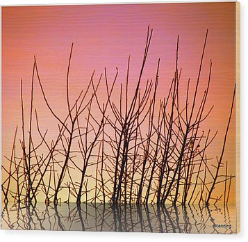 Reflects In Nature Wood Print by Michael Canning
