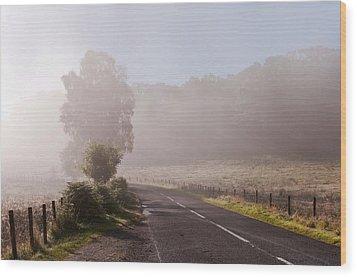 Refreshing Morning Fog In Trossachs. Scotland Wood Print by Jenny Rainbow