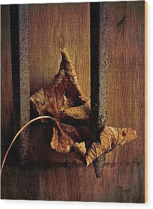 Remnant Wood Print by Odd Jeppesen