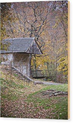 Renfrew Park Wood Print