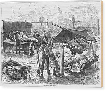 Republican Barbecue, 1876 Wood Print by Granger
