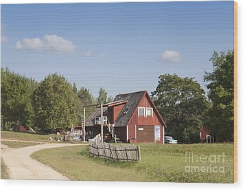 Resort Building In The Countryside Wood Print by Jaak Nilson