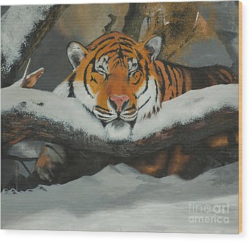 Resting Tiger Wood Print by Thomas Luca