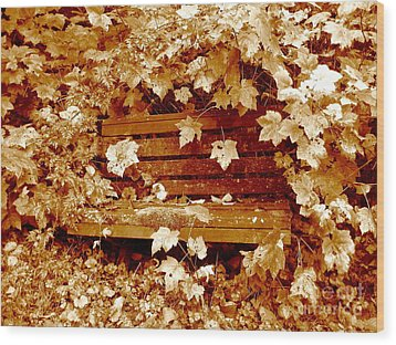 Resting Too Wood Print by Kathy Bassett
