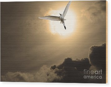 Return To Eternity . Gold Cut Wood Print by Wingsdomain Art and Photography