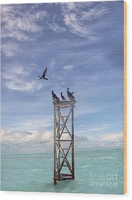 Revised Image Of Birds On Wooden Stand In The Ocean Off Key West Wood Print by Christopher Purcell