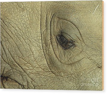 Rhino Eye Wood Print by Marc Bittan