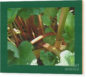 Wood Print featuring the photograph Rhubarb-i by Patricia Overmoyer