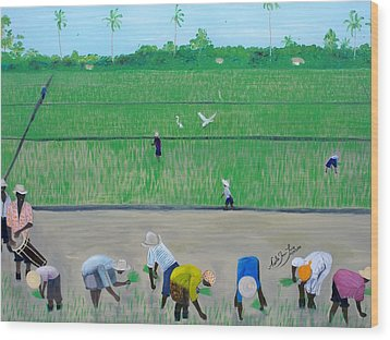 Rice Field Haiti 1980 Wood Print by Nicole Jean-Louis