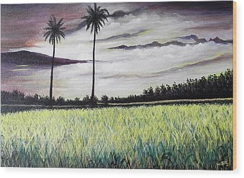 Rice Field  Wood Print by Usha Rai