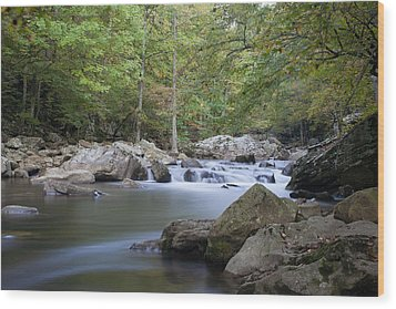 Richland Creek Wood Print by David Troxel