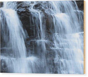 Ricketts Glen Waterfall 3942 Wood Print by David Dehner