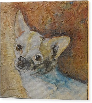 Rico Blue Chihuahua Wood Print by Maureen Pisano