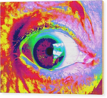 Rico's Eye Wood Print by Renate Nadi Wesley