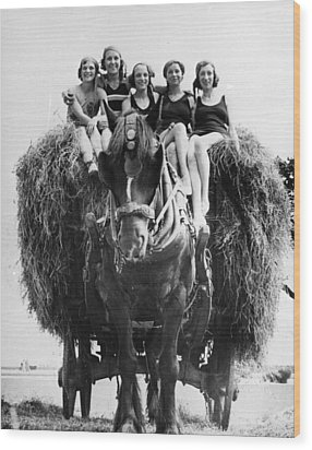 Ride On A Hay Cart Wood Print by Fox Photos