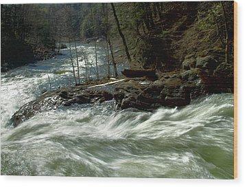Riding The River Wood Print by Karol Livote