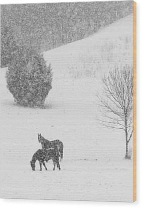Riding The Storm Out Wood Print by Coby Cooper