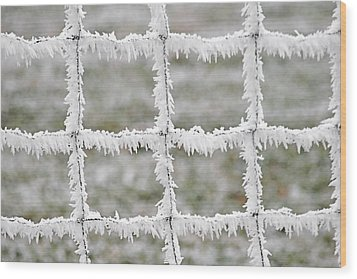 Rime Covered Fence Wood Print by Christine Till