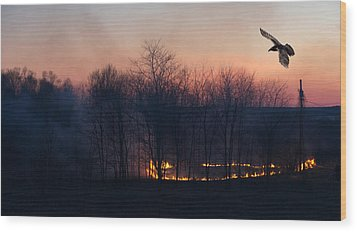 Ring Of Fire. Wood Print by Kelly Nelson