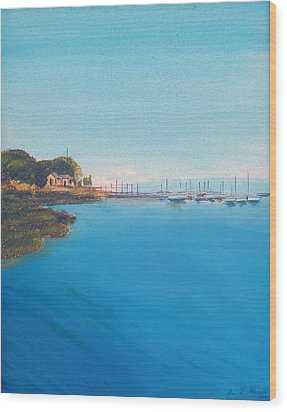 Rings Island Wood Print by Anthony Ross