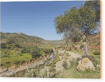 Rio De Cauche, Malaga Province, Spain. Wood Print by Ken Welsh