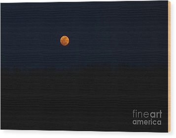 Wood Print featuring the photograph Rise Of The Harvest Moon by Julie Clements