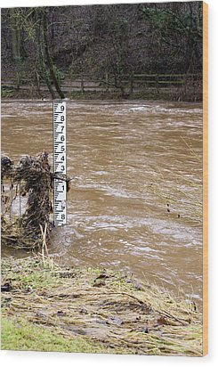 Rising River Level Wood Print by Mark Williamson