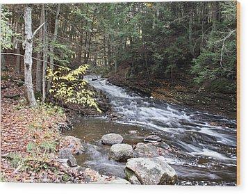 River Below Falls 3 Wood Print