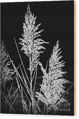 Wood Print featuring the photograph River Grass by Nancy Dole McGuigan