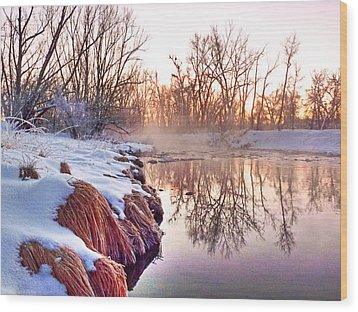 Wood Print featuring the photograph River Grasses Colorado by William Fields