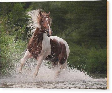 River Horse Wood Print