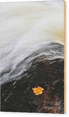 River In Fall Wood Print by Elena Elisseeva
